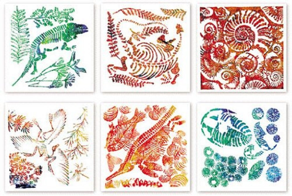 Science Art /& Craft 6 Pk Fossil Rubbing Plates