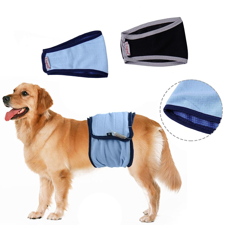Dog Diaper, Male Cosy respirant sanitaire physiologique Pantalon lavable Chien couches GF