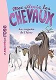 Mes amis les chevaux, tome 7 : La surprise de l'hiver