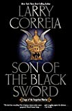 Son of the Black Sword (1) (Saga of the Forgotten Warrior)