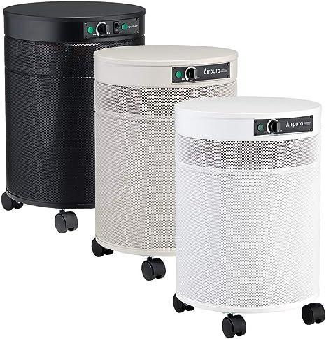Airpura R600 purificador de Aire – Blanco: Amazon.es: Hogar