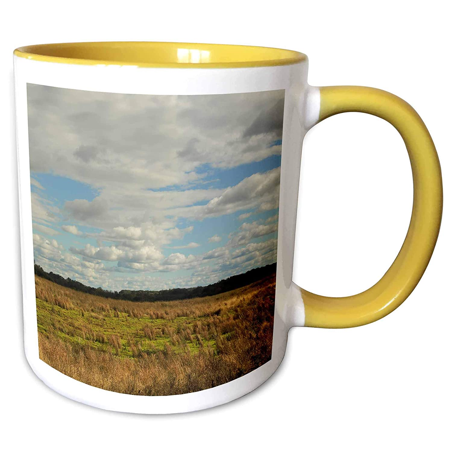 3dRose Stamp City - nature - Photograph of an open field in South Carolina on a cloudy day. - 15oz Two-Tone Yellow Mug (mug_302844_13)