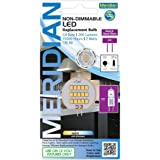 Meridian Electric 13175 Meridian 2-Watt 200 Lumen G4 Non Dimmable 2