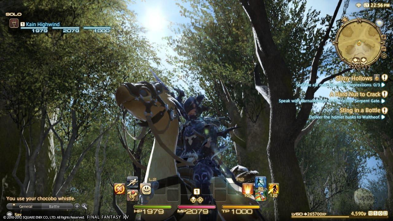 Amazon com: Final Fantasy XIV: A Realm Reborn - Playstation