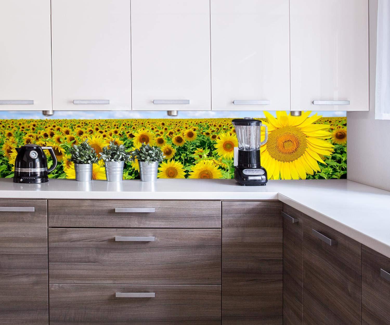 B x H Hartschaum 15mm Rückwand Küche Fotorückwand Küchenbild Bild