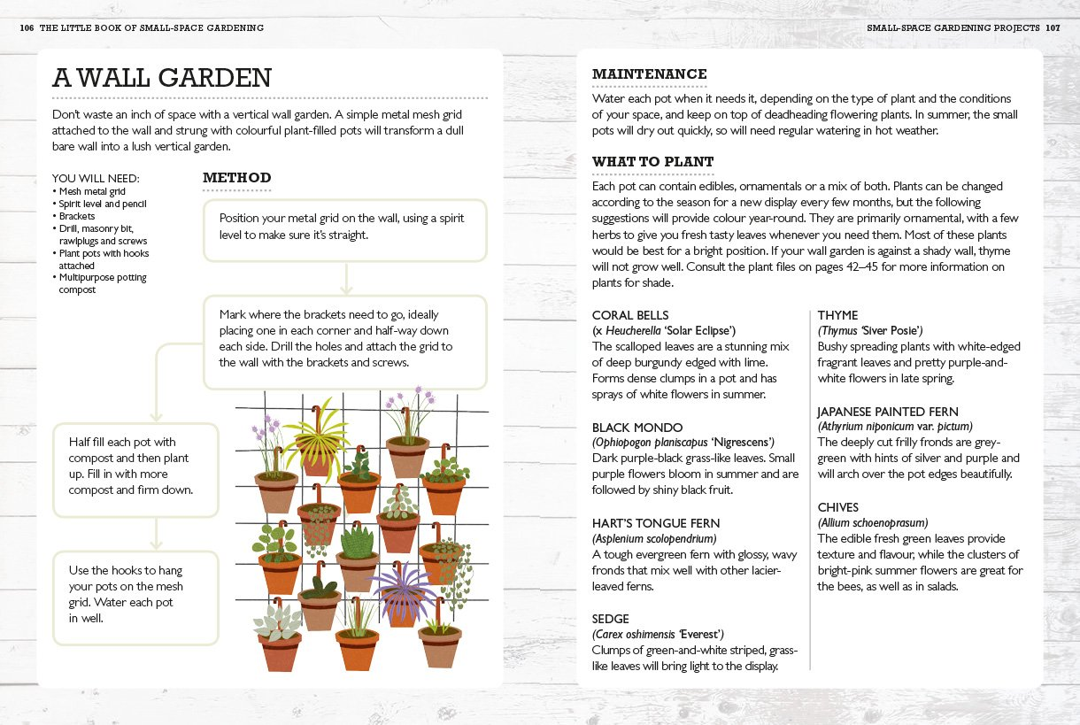 Rhs Little Book Of Small Space Gardening Easy Grow Ideas For Balconies Window Boxes Other Outdoor Areas Rhs Little Books Maguire Kay 9781784724269 Amazon Com Books,Home Office Furniture Arrangement Ideas