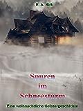 Spuren im Schneesturm: Eine weihnachtliche Geistergeschichte