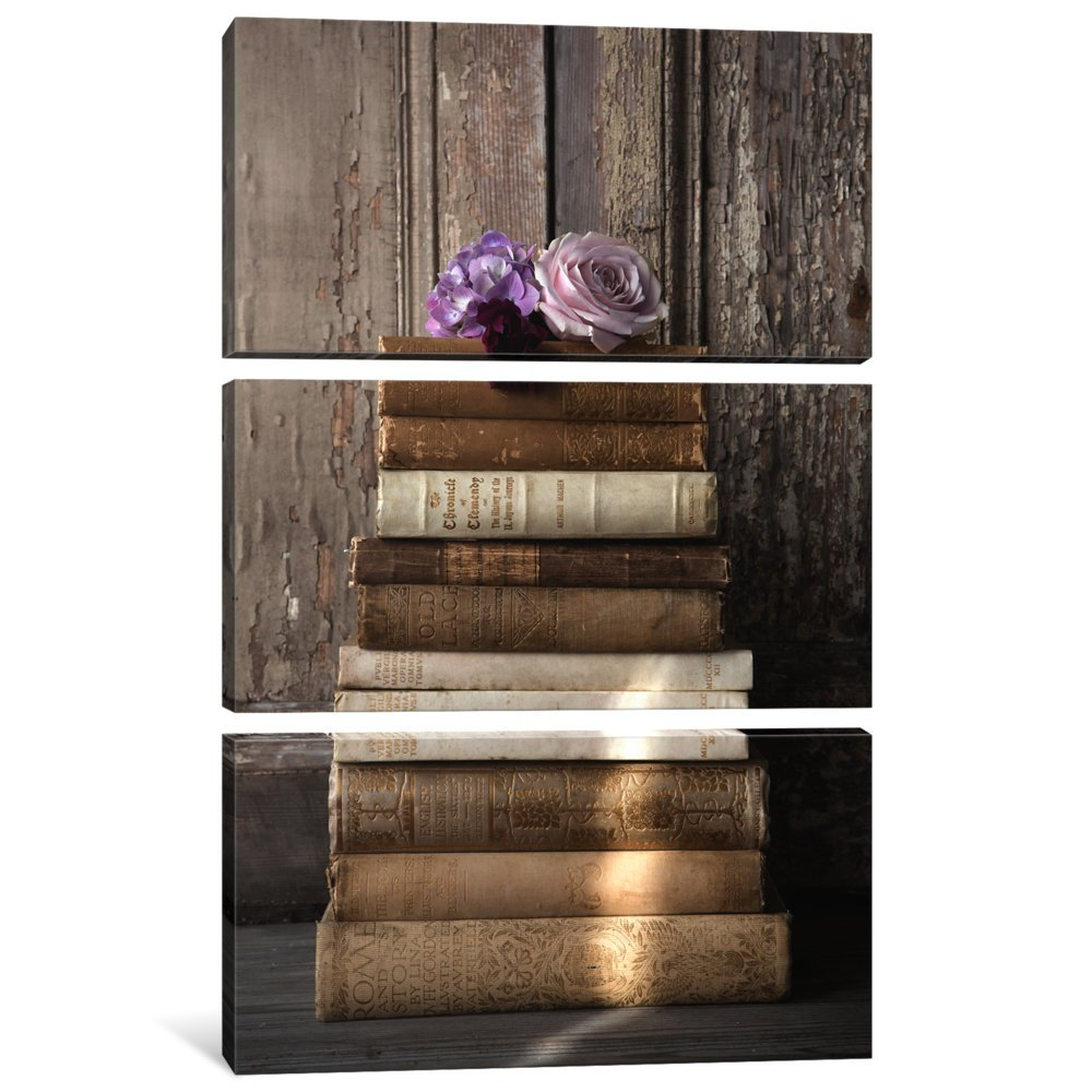 0.75 by 40 by 60-Inch iCanvasART 3-Piece Books I Canvas Print by Symposium Design