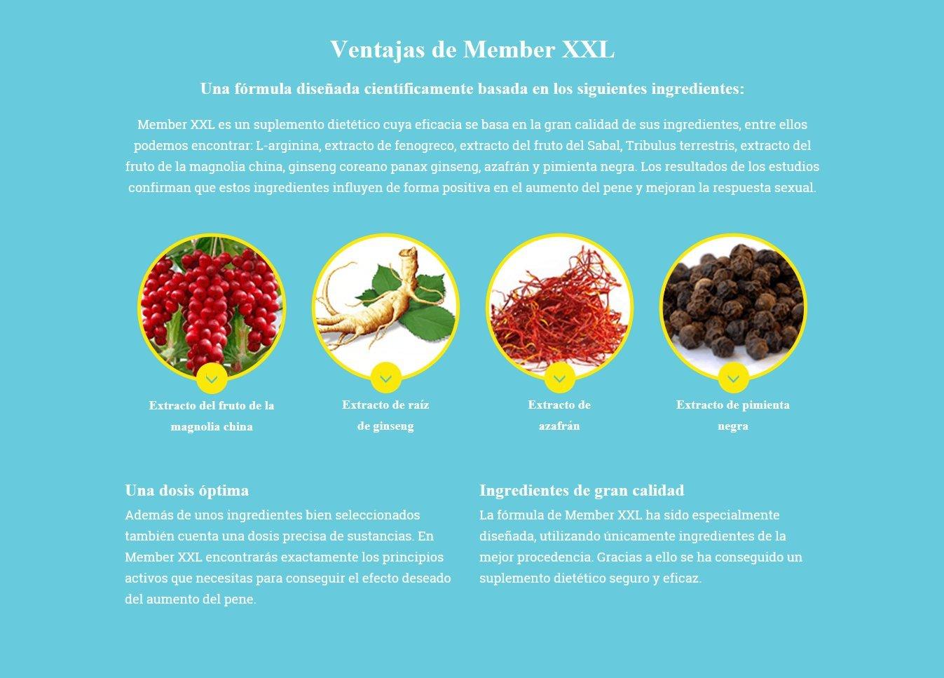 ✅MEMBER XXL prima potencia medicamentos & alargamiento del pene + 9cm, potencia y ayuda de erección para todos los hombres, paquete básico 1x60 cápsulas ...