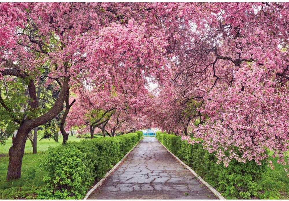 OERJU 10x7ft Cherry Blossom Backdrop Spring Garden Path Grass Valentine's Day Nature Scenic Outdoor Wedding Photography Background Birthday Party Decor Banner Photo Studio Booth Prop