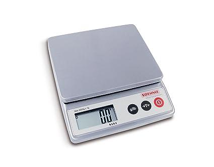 Soehnle Professional - Báscula compacta (peso mínimo que mide: 1 g)