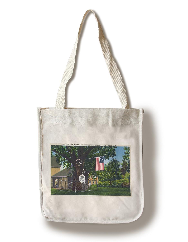 【今日の超目玉】 ジュネーブ、ニューヨーク – View of View Historic Scytheツリーファームon Tote Route to B01840XDE2 Waterloo Canvas Tote Bag LANT-16781-TT B01840XDE2 Canvas Tote Bag, 豊田村:00c776a7 --- ballyshannonshow.com