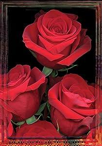 Toland Home Garden Fresh Cut 28 x 40 Inch Decorative Red Rose Valentine Flower House Flag