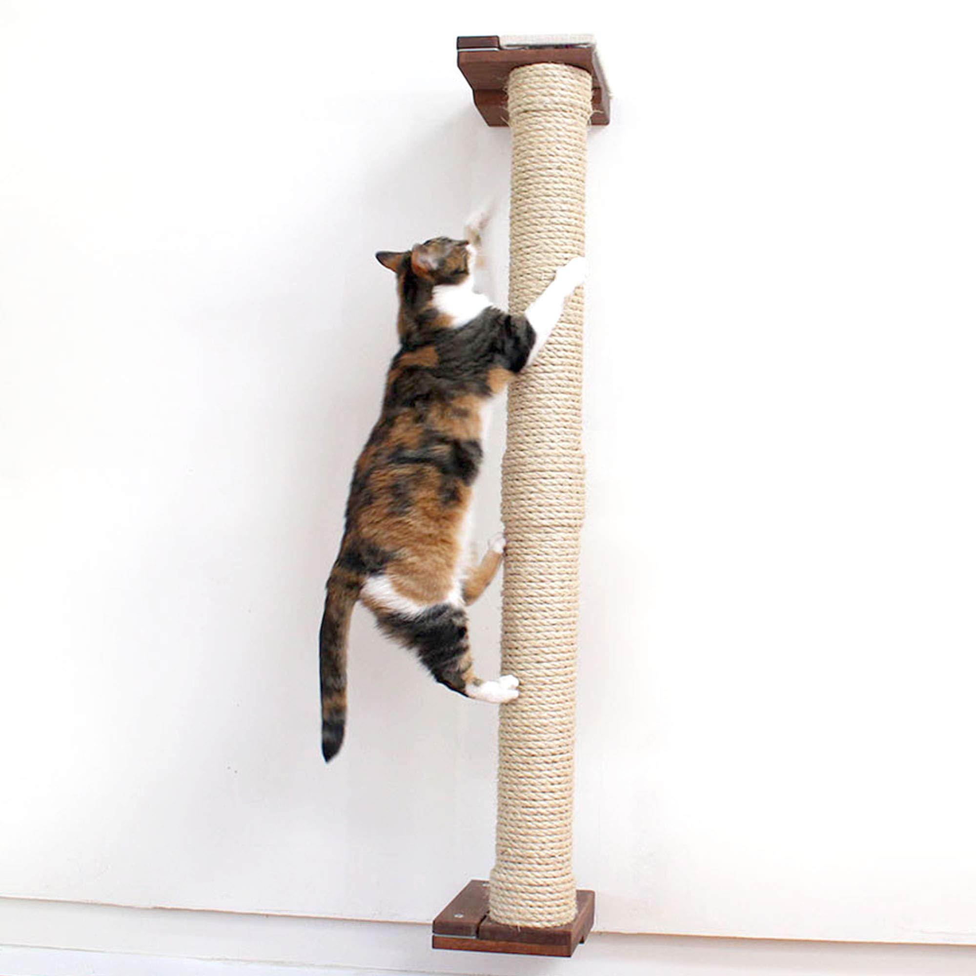 CatastrophiCreations Cat Mod 4' Climbing Vertical Sisal Pole Wall, English Chestnut, One Size by CatastrophiCreations