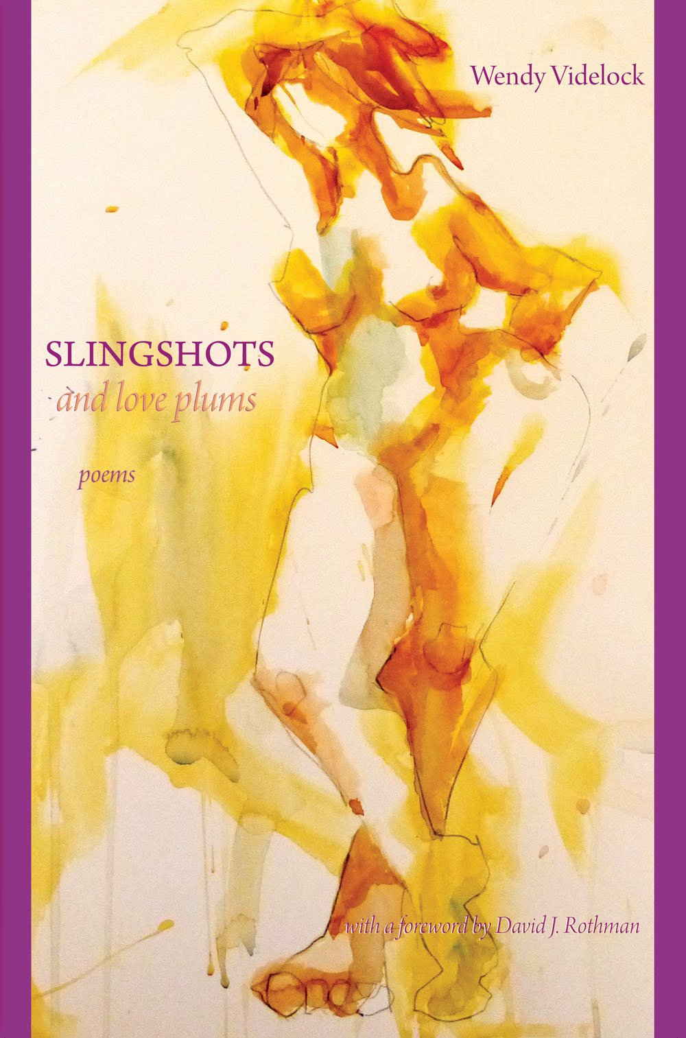 Slingshots and Love Plums PDF