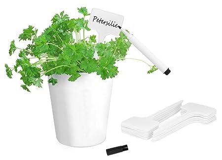 COM-FOUR® Letreros para plantas 16x con marcador negro a prueba de ...
