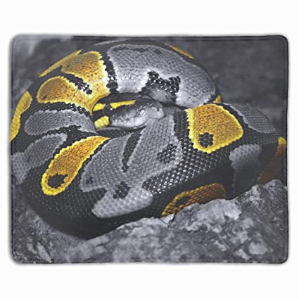 Amazon com : Snake Scales Color Gaming Mouse Map Pad with