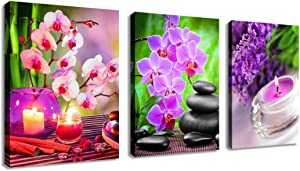 """Zen Wall Art Canvas Art Decor SPA Stone Green Bamboo Pink Waterlily Frangipani Pictures Modern Canvas Artwork Contemporary Spa Zen for Home Office Kitchen Bathroom Framed Pink 12"""" x 16"""" 3 Pieces"""