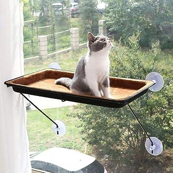 Amazon.com: QNMM - Percha para ventana de gato de lujo ...