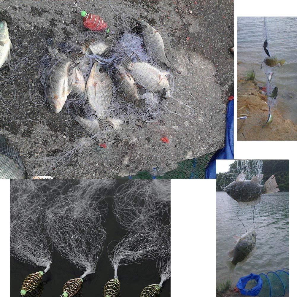 Dilwe Fischk/öder Netz Kunststoff Faltfischen Fr/ühlingsnetz mit Leuchtenden Perlen f/ür Nachtfischen Shoal Outdoor Aktivit/äten