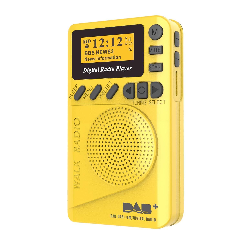 Jusqu/à 22 Heures de Lecture DAB//DAB+ Digital /& FM Radio Batterie Rechargeable Int/égr/ée Avec R/éveil et Lecteur MP3 /à Carte SD Poche Ordinateur de Poche Radio Num/érique