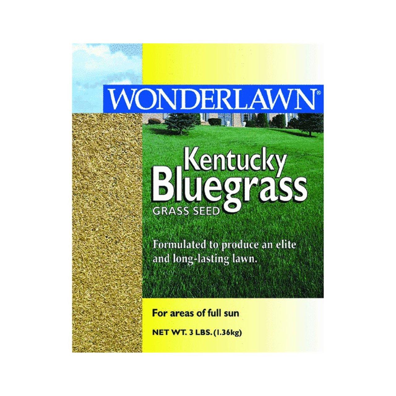 Barenbrug USA 50201 Kentucky Bluegrass Grass Seed