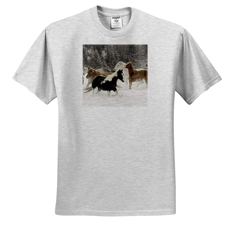 Kalispell Horses in Winter 3dRose Danita Delimont ts/_314903 - Adult T-Shirt XL Montana Horses