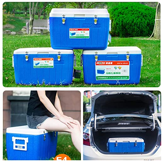 ZLL Nevera-Refrigerador para autos Caja de 65L Congelador sin ...
