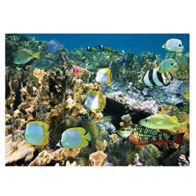Fewear Jigsaw Puzzles 1000 Pieces for Adult, Ocean of Life Jigsaw Puzzles (Multicolor): Sports & Outdoors