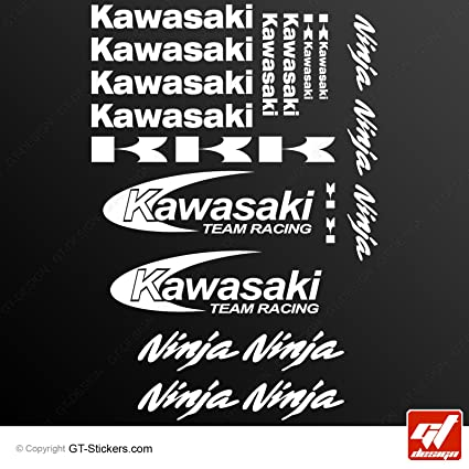 Stickers KAWASAKI RACING TEAM NINJA-blanco-Tabla de 20 ...