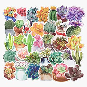 Jasion 70-Pcs Vinyl Stickers Lovely Watercolor Flowers Cactus and Succulent Plants Cartoon Graffiti Decals for Water Bottles Cars Motorcycle Skateboard Portable Luggages Phone Ipad Laptops