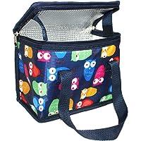 TEAMOOK Kühltasche Lunch Tasche Isoliertasche zur Arbeit und Schule Gehen 4 Liter, 22 x 17 x 12 cm