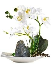 Artificial Phaleanopsis Arrangement with Vase Decorative Orchid Flower Bonsai Rockery Series (White)