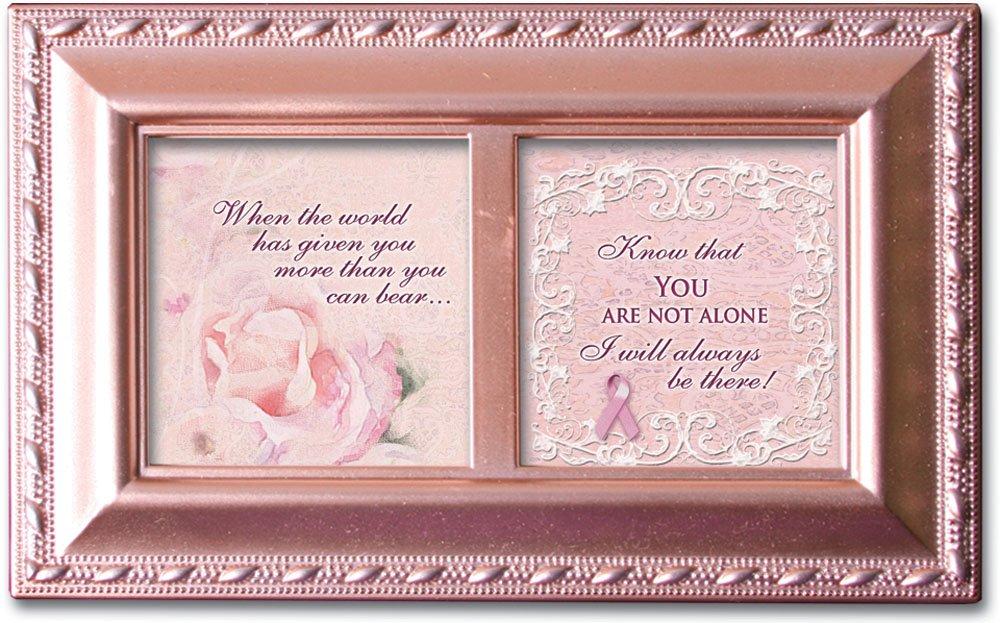 【期間限定】 Cottage Garden You B00BRXBZ1C You Are Not Aloneピンク小柄音楽ボックス/ジュエリーボックスPlays Are Wind Beneath Wings B00BRXBZ1C, 【当店一番人気】:46d361d6 --- arcego.dominiotemporario.com