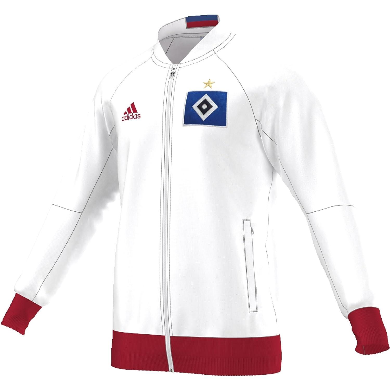 adidas Herren Anthem HSV Jacke