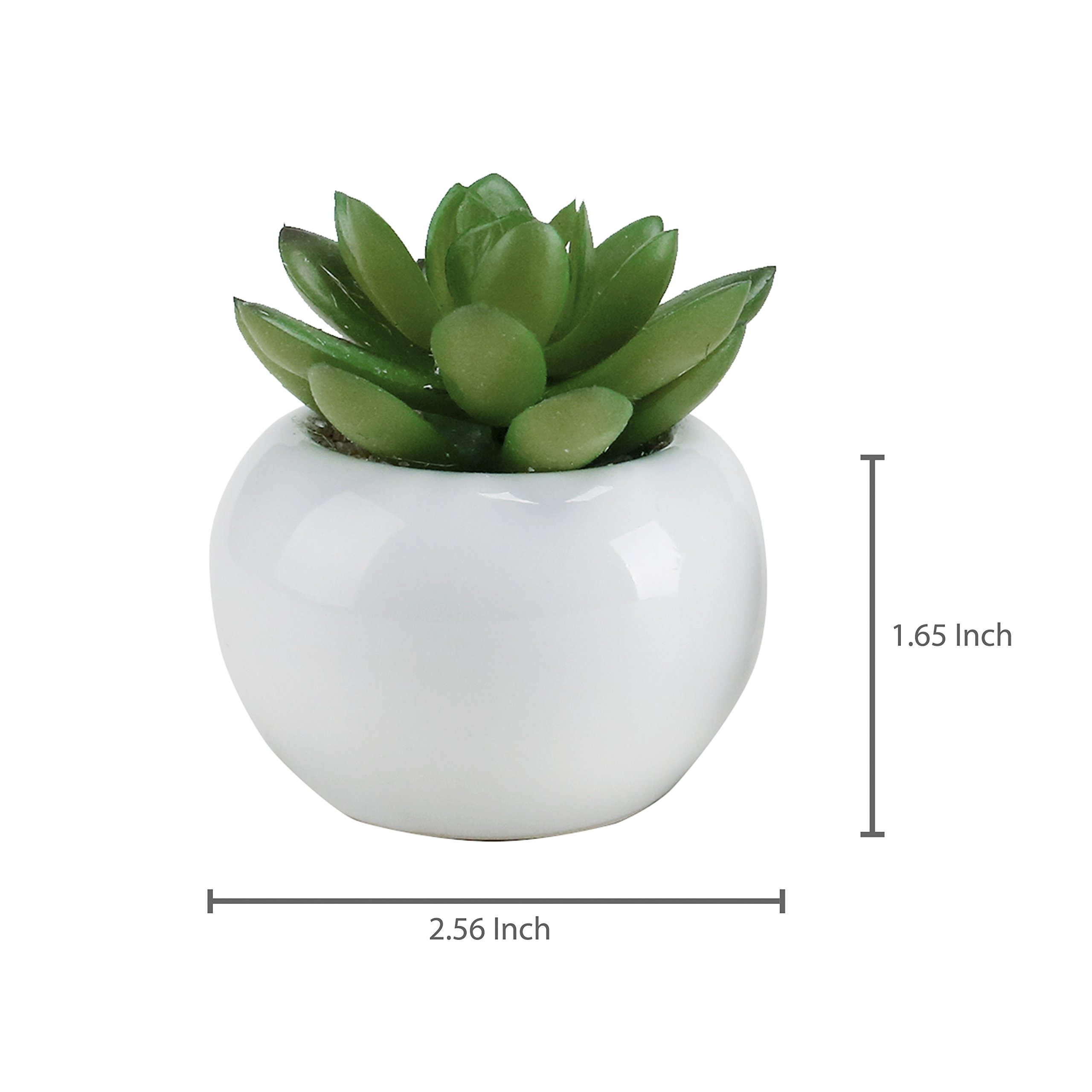 3-inch Mixed Green Artificial Succulent Plants in Round Glazed White Ceramic Pots, Set of 4 by MyGift (Image #6)