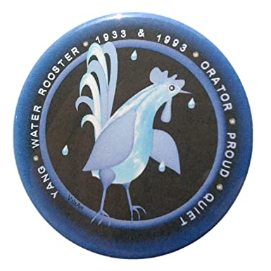 Amazon.com: Valxart Boys agua gallo 1993 1933 bundle-1 Pin ...