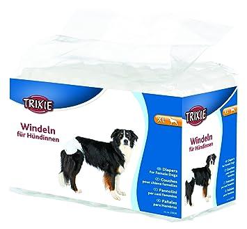 Tallas de pañales para perros