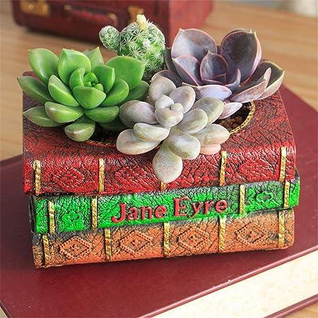 Decoraciones al Aire Libre Adornos de jardín Plantas País Paisaje Estilo Casa y Campo Hogar y jardín Decoración de Escritorio Bonsai para el jardín (Color : Book Pots, tamaño : 12.5x8.5x9.3cm): Amazon.es: