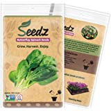CERTIFIED ORGANIC SEEDS (Appr. 225) - Butterflay Spinach - Spinach Seeds Heirloom Pack - Non GMO, Non Hybrid - USA