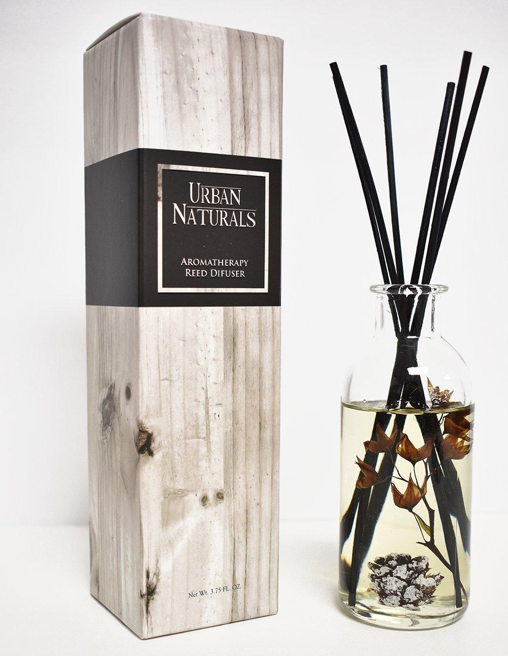 Urban Naturals Mountain Air Scented Fragrance Oil Reed Diffuser & Room Freshener | Golden Apples, Birch Wood Cashmere, Fennel & Cedar | Decorative Botanicals | Vegan | by Urban Naturals (Image #3)