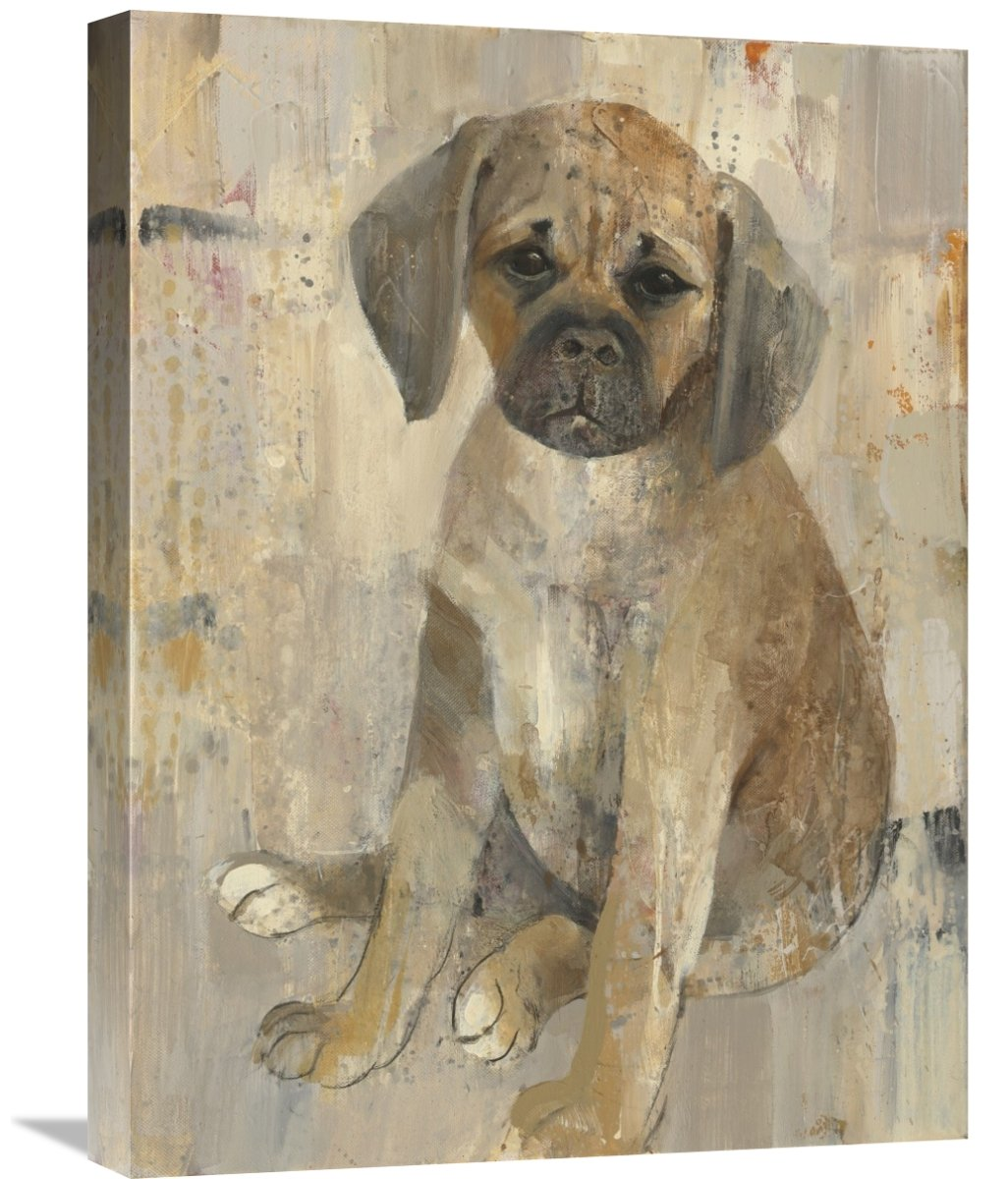 Global GalleryAlbena Hristova Paco Giclee Stretched Canvas Artwork 18 x 24