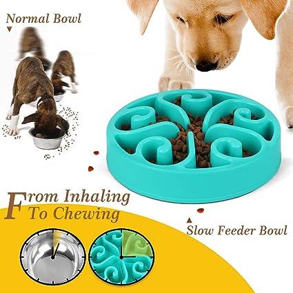 Rojo Laberinto Interactivo de Fibra de bamb/ú Seguro y no t/óxico para Mascotas comedero antivoracidad YXYP Cuenco de alimentaci/ón Lenta para Perros