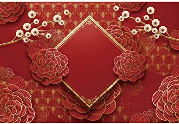 OFILA Polyester Fabric Chinese Paper Laterns Backdrop 5x7ft Chinatown Spring Festival Celebration Photography Background Chinese New Year Events Decor Chinese Stype Photos Props