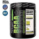 Aminoacidos BCAA + Glutamina 12:1:1 Forzagen 330 g Piña Suplemento Gym