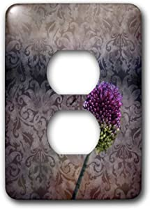 Duplex Receptacle Outlet Wallplate 1 Gang Outlet Covers Inspired Pink Flower Art Vintage Décor Floral Classic Beadboard Wall Plate Decorator Unbreakable Faceplate