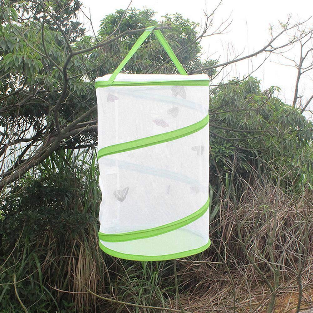 reptiles (Verde ara/ñas gusanos Gran caja plegable port/átil para el h/ábitat de insectos y mariposas al aire libre para mariposas escarabajos