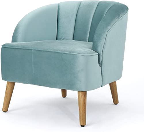 Christopher Knight Home Amaia Modern Velvet Club Chair