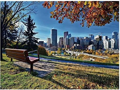 7x10 FT Vinyl Photography Backdrop,Park Bench Overlooking The Skyline of Calgary Alberta During Autumn Tranquil Urban Background for Graduation Prom Dance Decor Photo Booth Studio Prop Banner