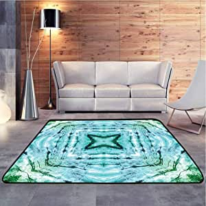 Living Room Carpets Star Inside Square Shaped Kaleidoscope Tie Dye Motive with Outer Figures Image Soft Comfy Area Rugs Contemporary Painting Art, 6.5 x 10 Feet